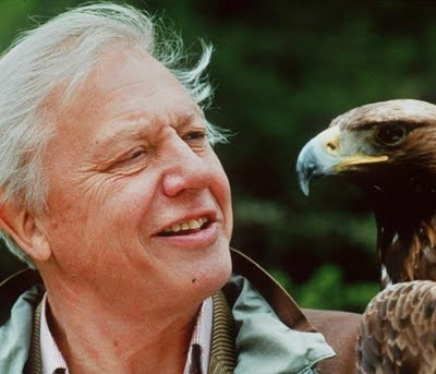 Sir David Frederick Attenborough